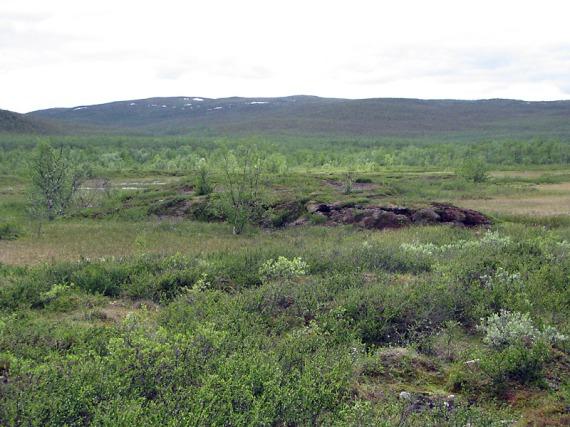Palsas in der Tundra