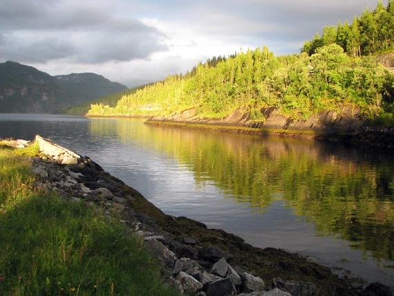 Herrliches Licht am Fjord