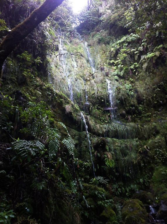 Wasserfälle überall