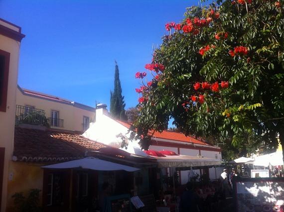 Stadtansichen Funchal