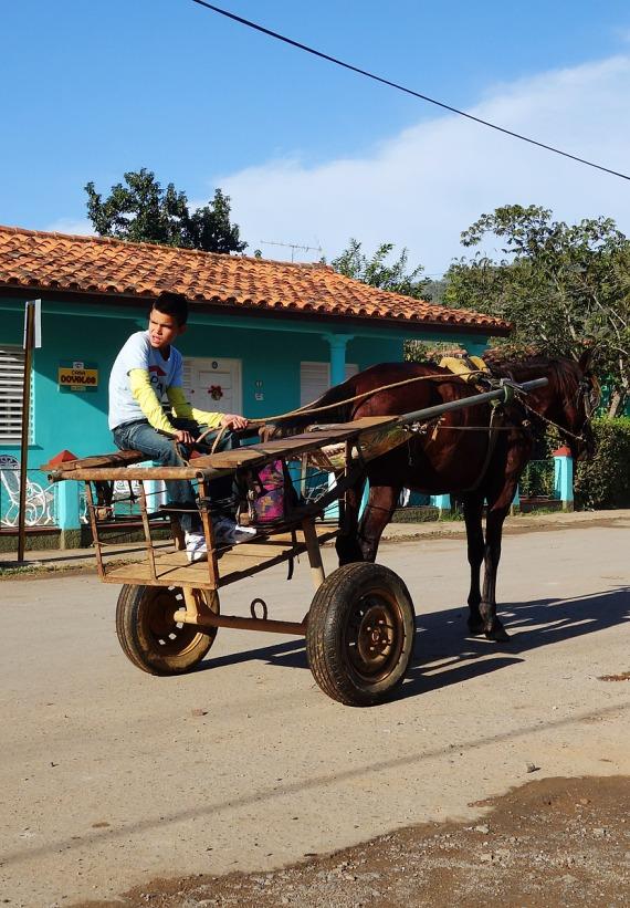 Es gibt sehr viele kleine Fuhrwerke überall in Kuba.