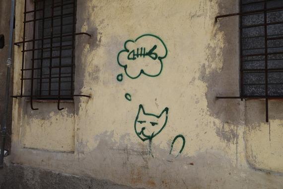 Der Traum vom eigenen Fisch, La Habana