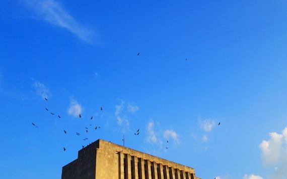 Greifvögel am Ministerio de las Fuerzas Armadas Revolucionarias, La Habana