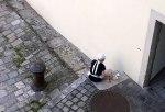 Stadtszene Regensburg