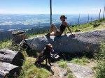 Über den Wipfeln des Bayerischen Waldes
